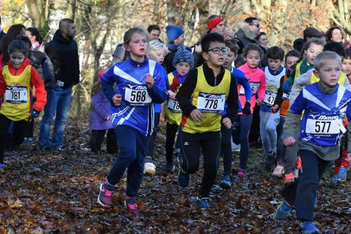 Cross de Chaville 2017